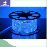 60LEDs/M 220V 5050 고전압을%s 가진 방수 LED 지구 빛
