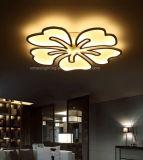 Nuova garanzia 100% dell'indicatore luminoso di soffitto dell'acrilico LED