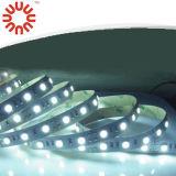Tira 5050 do diodo emissor de luz da boa qualidade 60LEDs/M
