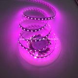 Tira del producto LED del OEM para la linterna del coche