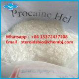 국부적으로 무감각 약제 처리되지 않는 스테로이드 분말 프로카인 HCl
