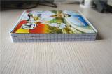 Cuaderno barato de encargo de libro de ejercicio del estudiante del cuaderno del papel de escuela de la impresión del papel (nota 1)
