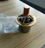 02250105-553 válvula del termóstato de 02250078-204 Ws3700 Ws708 001084