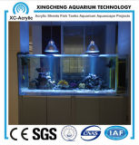 El tanque de acrílico por encargo especial de las medusas
