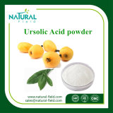 Порошок выдержки 98% Ursolic листьев Loquat выдержки завода 100% естественный кисловочный HPLC