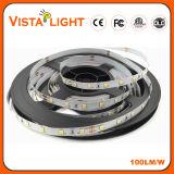 Luz de tira de IP20 DC24V RGB LED para los clubs de noche