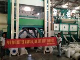 Hons+ de Automatische Sorteerder van de Kleur van de Rijst met de Overzee Beschikbare Dienst van de Ingenieur
