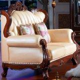Sofà di cuoio per la mobilia del salone (D508)
