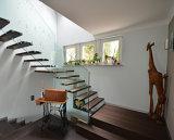 Escalera de cristal recta elegante/escalera de interior