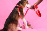애완 동물 제품 공급 큰 중간 개 가죽끈 (L007)