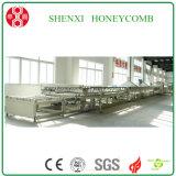 Machine de nid d'abeilles de résistance d'incendie de Wuxi Shenxi