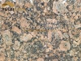 Nuova lastra dorata brasiliana di Gangsaw del granito di Giallo Fiorito