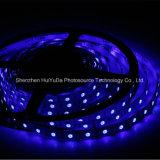 高い明るさ青いカラーIP20 SMD5050チップ30LEDs 7.2W DC24V LEDストリップ