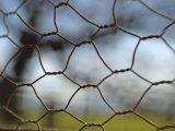 Плетение провода /Hexagonal сетки мелкоячеистой сетки PVC Coated с низкоуглеродистой сталью