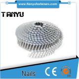 1 1/4 toiture de bobine d'acier inoxydable de X. 120 Ringshank 304 cloue 1200CT