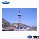 Goma del xantano de la buena calidad en la aplicación del petróleo con alta calidad