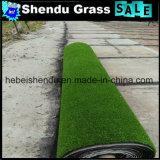 두 배 역행 SBR 유액 20mm 160stitch 정원 인공적인 잔디
