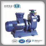 Bomba elétrica de transferência de combustível Cyz-a Self Priming Metering Pumps