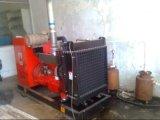 Генератор Biogas/Biogas Genset/Biogas CHP/Biogas Cummins блок Co-Generation
