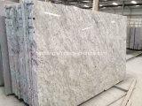 Het Witte Graniet van Sri Lanka van Andromeda voor de Plak van de Tegel