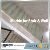Natural Cream Marble Stone Stairs/Step/Step&Riser/Treads for Construction Decoration