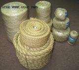 Filato della fibra del sisal di alta qualità