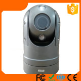 100m Nachtsicht Hikvision 2.0MP 30X Optical Zoom HD IPPTZ CCTV Camera