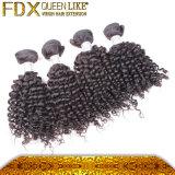 Capelli umani del gruppo degli accessori dei capelli di modo di Short malese di affare