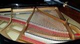 黒いキーボードグランドピアノ(HG-152E)のChloris