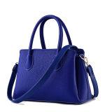 La Cina fabbrica la signora Designer Leather Handbags (LFV199) di modo