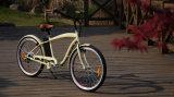 Electric Bike CompanyのためのCrusierの標準的な電池式の自転車
