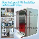Caminhada da isolação do plutônio do painel do fechamento da came no quarto frio