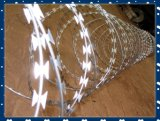 PVC ad alta resistenza Coated Razor Barbed Iron Wire di Galvanized per Security Cina Alibaba Manufacture