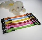 Colar de cão do animal de estimação do diodo emissor de luz/trela leves para a venda por atacado