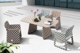 Allwetter- langlebiger im Freien Möbel-neuer Entwurfs-Patio-bunter Garten-Weidensofa-Set