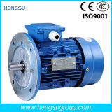 IP55와 F Class를 가진 Ye2 Three Phase Asynchronous Electric Motor