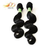 Colore naturale Tanglefree del Virgin 7A del commercio all'ingrosso 100% delle trame Burmese dei capelli