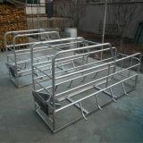 Hochfeste galvanisierte Schwein-landwirtschaftliche Maschine-Feder