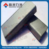 Barras del carburo de tungsteno de Zf15//Zh10 STB con llanura excelente