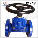 Check Valve with Saunders Diaphragm