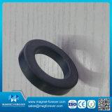 De permanente Magneet van de Generator van de Magneet van het Ferriet van de Ring