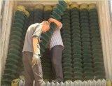 50X50mm PVCロールの上塗を施してあるチェーン・リンクの金網