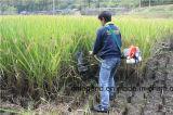 Moissonneuse de balai pour le riz