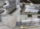 Zufuhr der Weltpopuläre Fisch-800-1000kg/H, die Maschine herstellt
