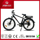 Sale caliente Mountain Electric Bike con 500W Powerful Rack Battery 13ah Long Range