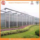 Vehículos/jardín/flores/casa verde del palmo de la granja de la hoja multi de la PC
