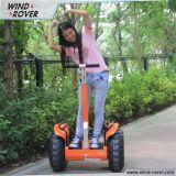 Vespa eléctrica V5+ de Evo del modelo dos de la rueda de la vespa de la vespa eléctrica elegante personal de la movilidad