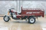 150cc per Suzuki 3-Wheel Motorcycle (TR-13)