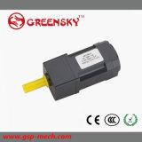 小さいマイクロ小型AC誘導によって連動させられるモーター