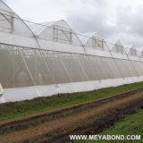 100% nuevo HDPE 50 de malla anti insectos acoplamiento de la red